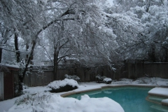 Tanya-Snow
